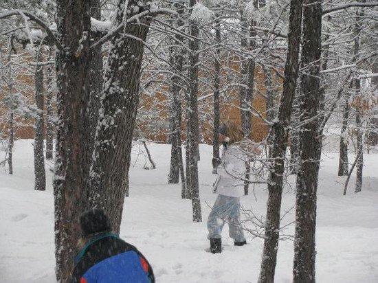 Pinetop-Lakeside, AZ : Snow play