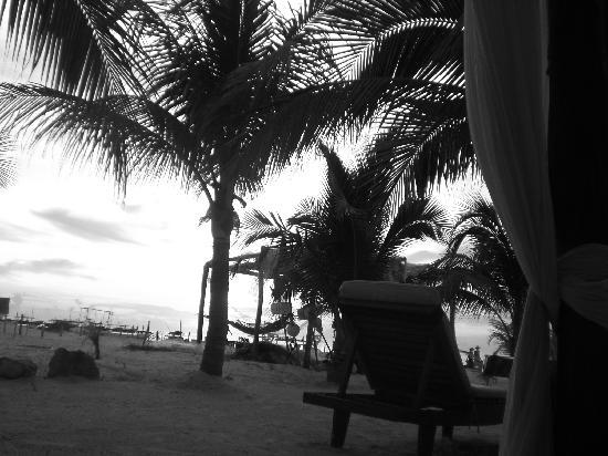 Holbox Hotel Casa las Tortugas - Petit Beach Hotel & Spa: playa