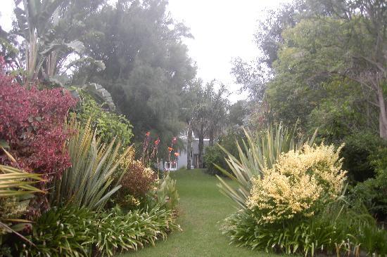 Ballinderry, The Robertson Guest House : Ballinderry garden