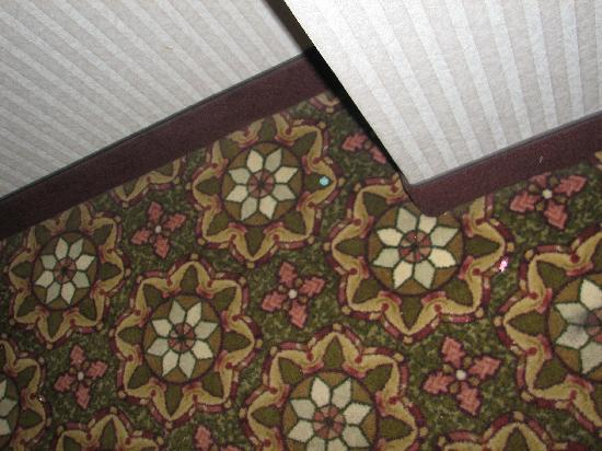 Clarion Hotel & Conference Center: Gum on the rug. (didn't I just see the cleaning lady? apparently she can't see gum)