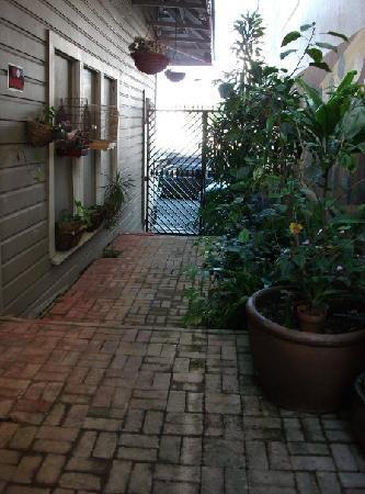 Hilo Bay Hostel : Outdoor Patio