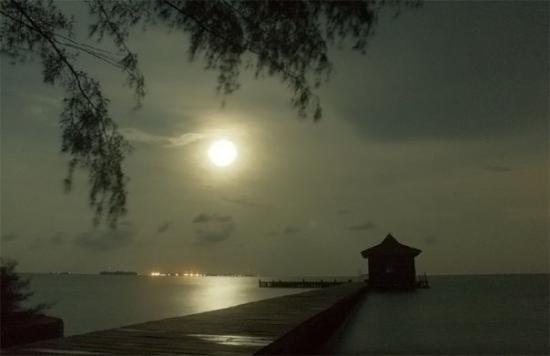 Jakarta, Indonesia: malam pulau semak