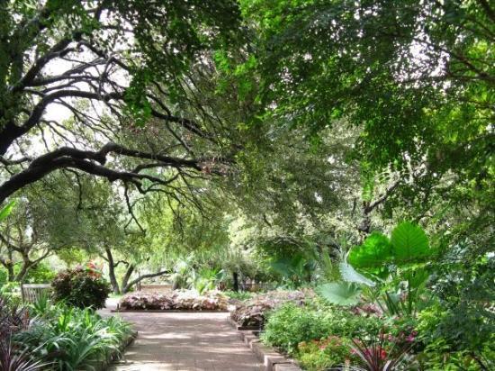 Botanical Garden Picture Of San Antonio Botanical Garden San Antonio Tripadvisor