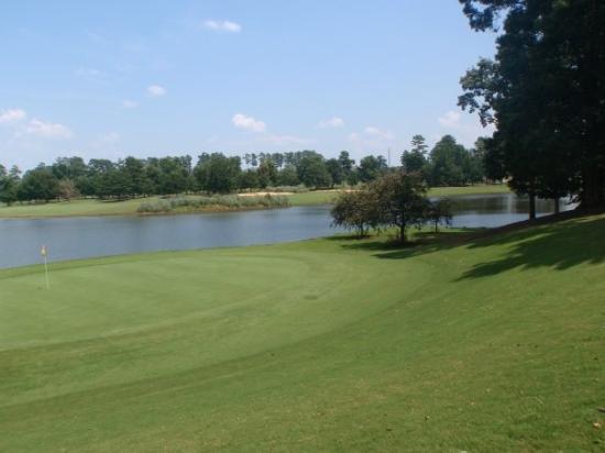 McDonough, GA: Golf @ The Cotton Fields