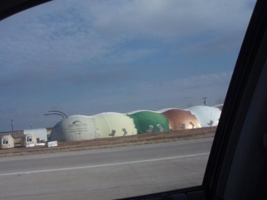 Fort Hood, TX: Bug House