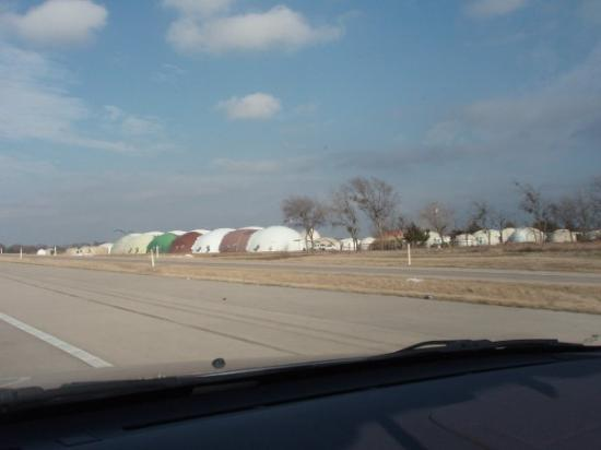 Fort Hood, TX: I wanna live in a catapillar.  $80 a month!!!!