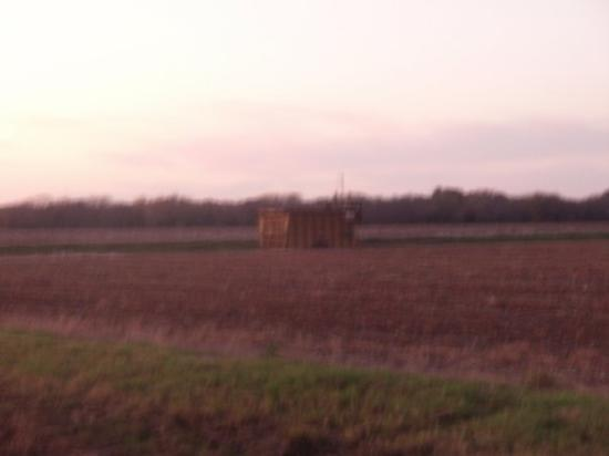 Commerce, TX: Cotton gin