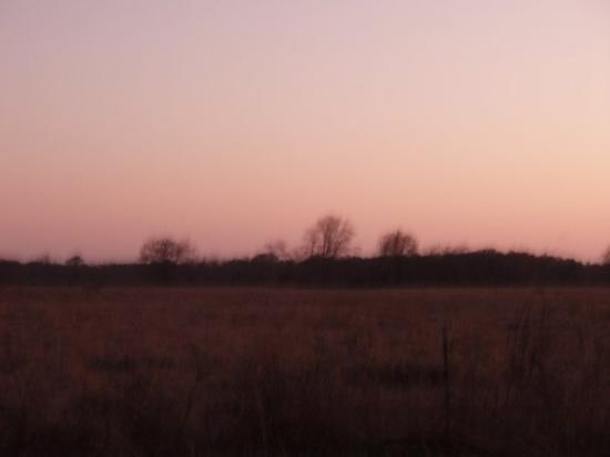 Commerce, TX: More country sunset