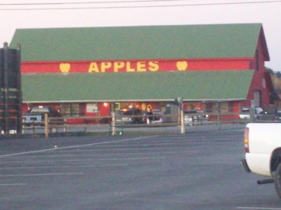 Ellijay, Джорджия: Finally, the apple houses!!!