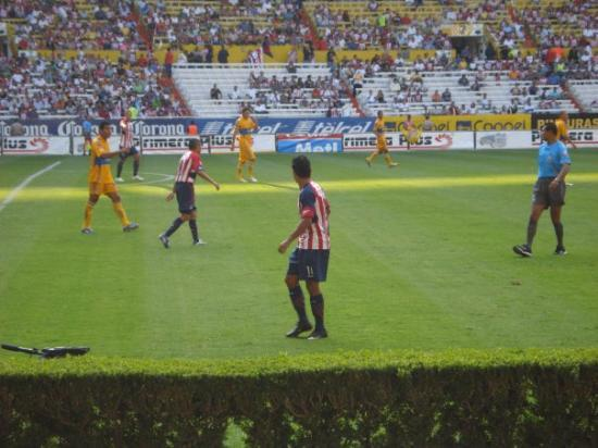 Guadalajara, Mexico: At the Chivas vs. Tigres game...Let's not talk much about the game.