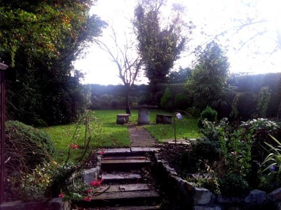 Thurles, Ireland: Our front yard