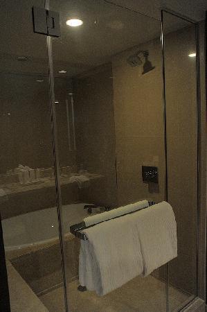 ARIA Resort & Casino: Shower and tub