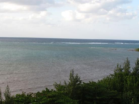 G&G's Clearwater Paradise: View from the deck