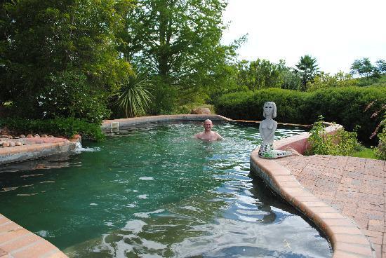 Lovely salt water pool
