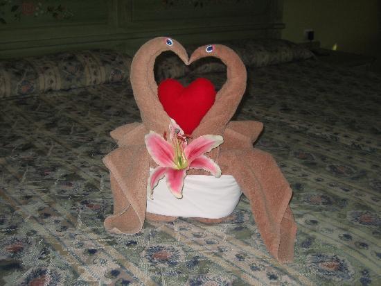 One of Elizabeth's towel creations