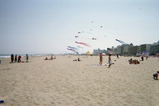 Ocean City, MD: Kite Festival Apr 08