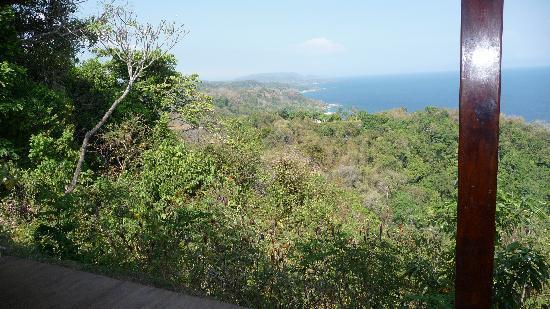 Anamaya Resort & Retreat Center : Views from Yoga deck