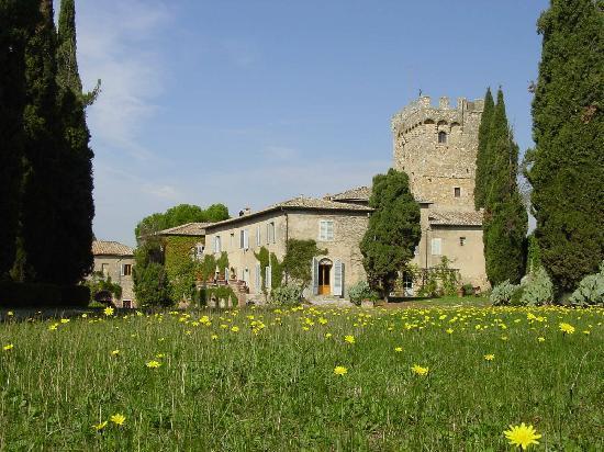 Castello di Spannocchia - spring flowers
