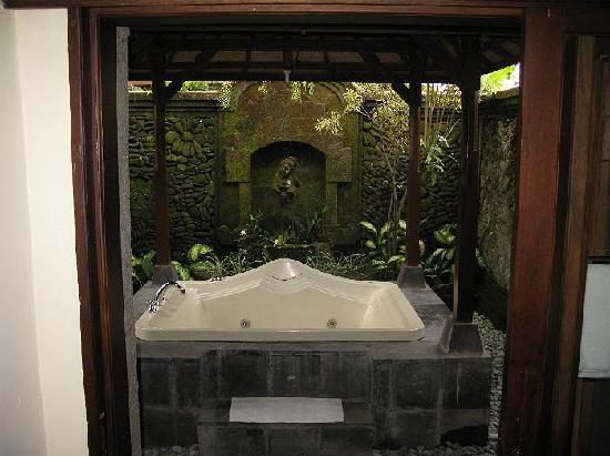 Outdoor Jacuzzi type bath