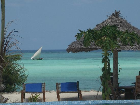 The Zanzibari : View right from the pool