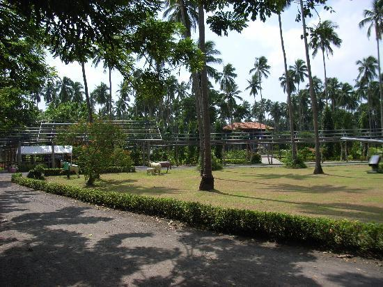 Grounds Picture Of Villa Escudero Tiaong Tripadvisor