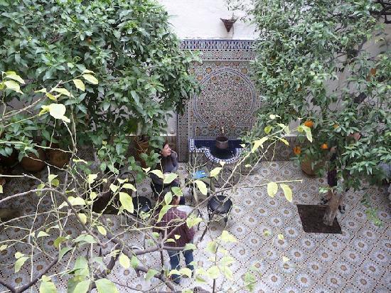 le magnifique patio avec les orangers
