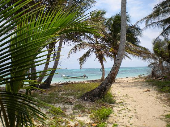 """Little Corn Beach and Bungalow: the """"street"""" as you arrive at the beach"""