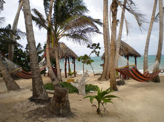 Little Corn Beach and Bungalow: plenty of hammocks to relax in