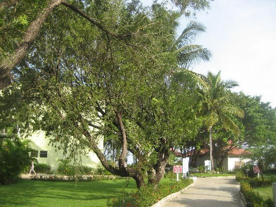 Hotel Beach House Playa Dorada: resort grounds