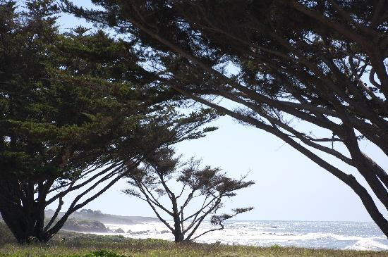 View of Moonstone Beach after a storm