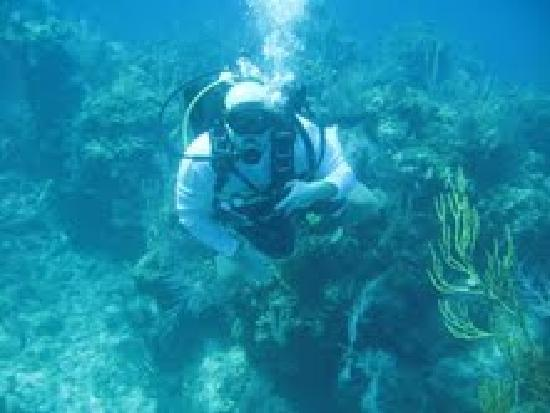 Andros: Diving for the first time