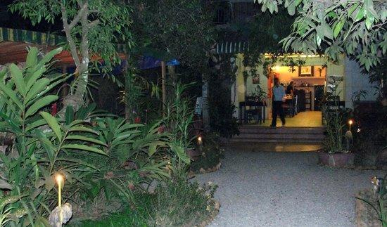 L'oasi Italiana: Lovely outside ambience
