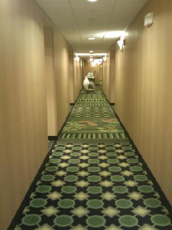 Fairfield Inn & Suites Wytheville: Hallway outside of room the next morning