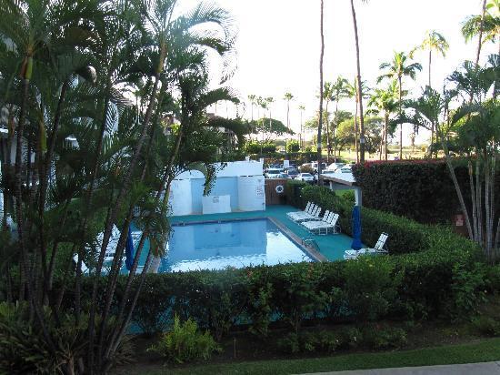 Maui Parkshore: pool