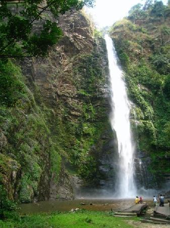 Gana: Wli Natural Reserve