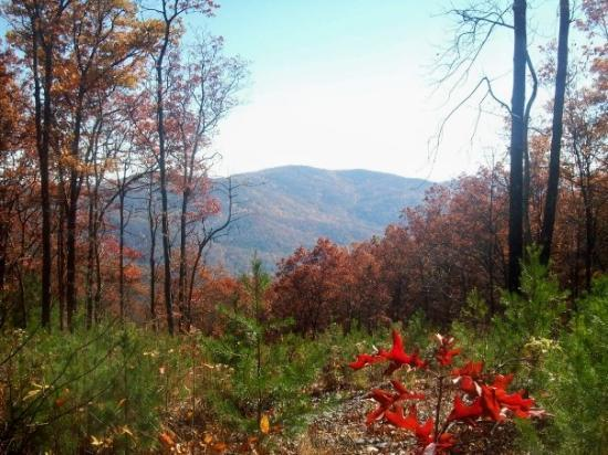 Ellijay, Georgien: Fort Mountain, GA