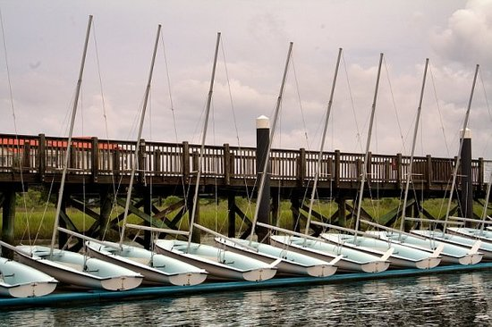All In A Row - Little Sailboats in Charleston Harbor waiting for a sunny day.