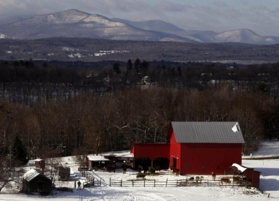 Middle Catskill Mountains and horse farm in the foreground.