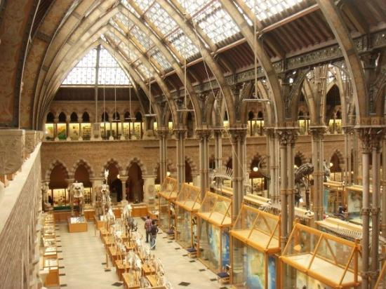 Natural History Museum Reviews