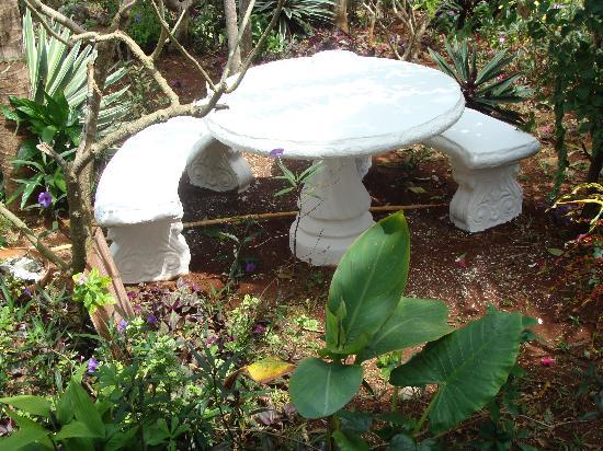 Judy House Cottages and Rooms: Garden table