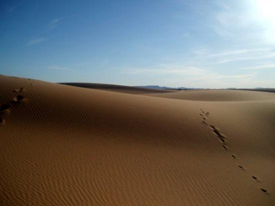 Erfoud, Maroc : Saara