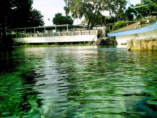 Weeki Wachee Springs: At the surface of the spring Head