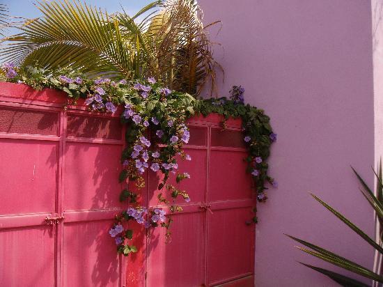 The Hotelito: bright colors
