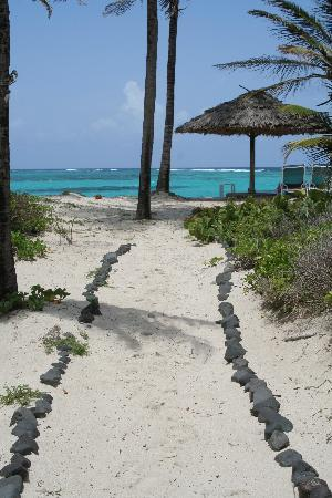 Petit St.Vincent: Path to the beach from our cottage