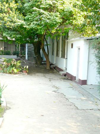 Agrawal Paying Guest House: roof top room