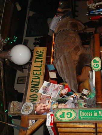 Green Parrot Bar