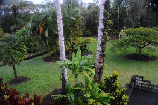 Pahoa, Hawái: Beautiful Grounds
