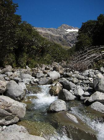 Arthur's Pass Hiking & Tranz Alpine One Day Tour: Bealey Valley