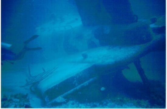 Bavaro Beach: sunken submarine :)