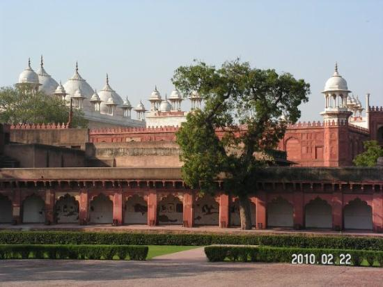 Agra Fort: The Perl Mosque